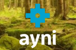 The Ayni institute logo against a background photo of a lush green forest.