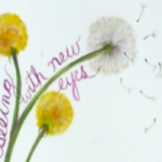 "A drawing of dandelions with the words ""seeing with new eyes,"" one of the four steps of the program."